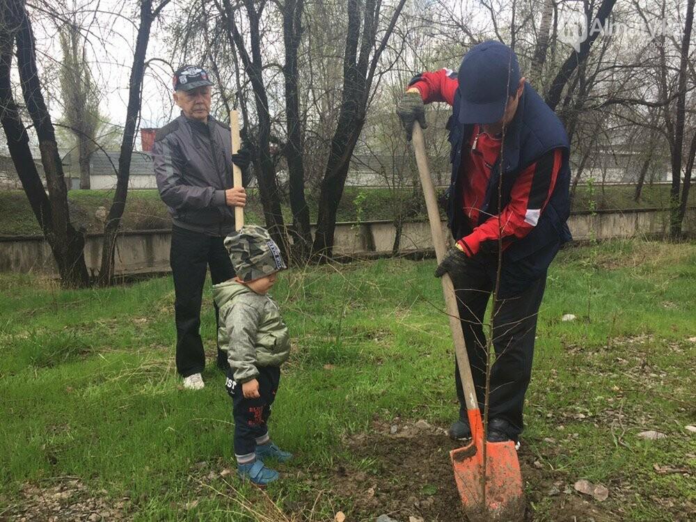 200 саженцев яблони Сиверса высадили в Алматы (ФОТО, ВИДЕО), фото-15