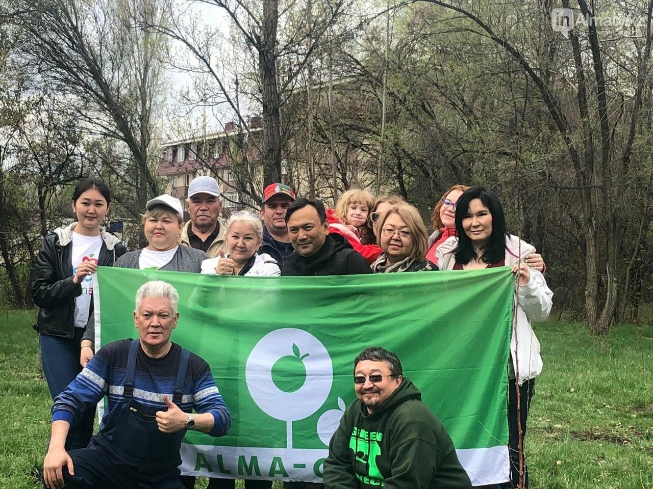200 саженцев яблони Сиверса высадили в Алматы (ФОТО, ВИДЕО), фото-1