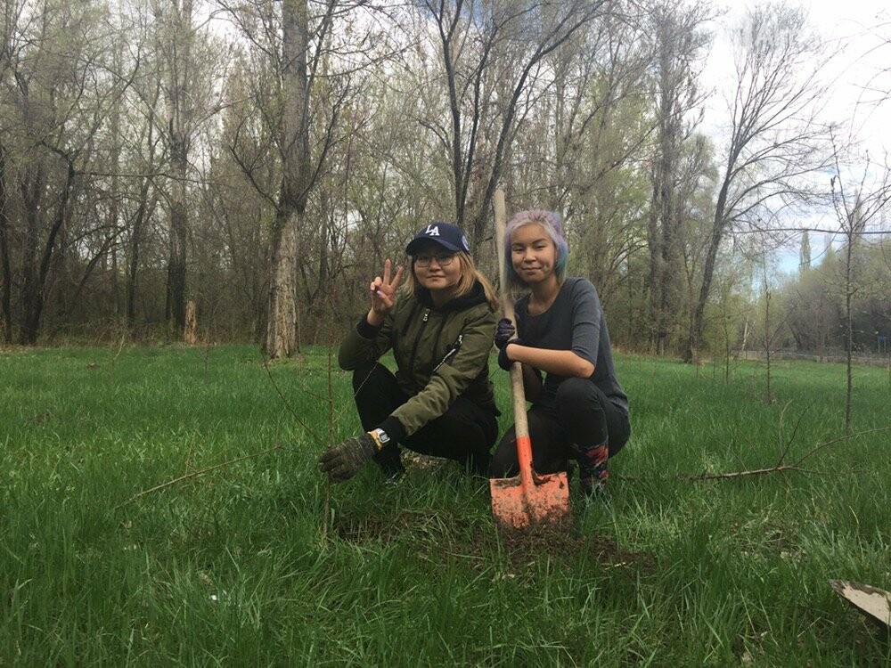200 саженцев яблони Сиверса высадили в Алматы (ФОТО, ВИДЕО), фото-5
