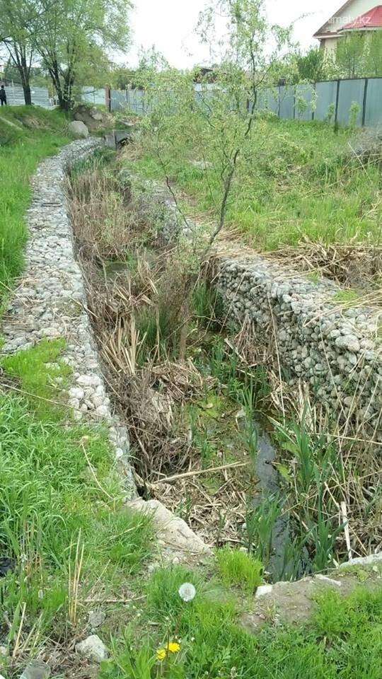 В болото превратились габионные каналы речки Карасу (ФОТО), фото-2