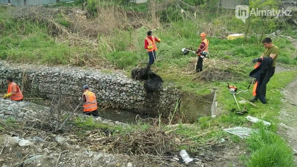 В болото превратились габионные каналы речки Карасу (ФОТО), фото-3