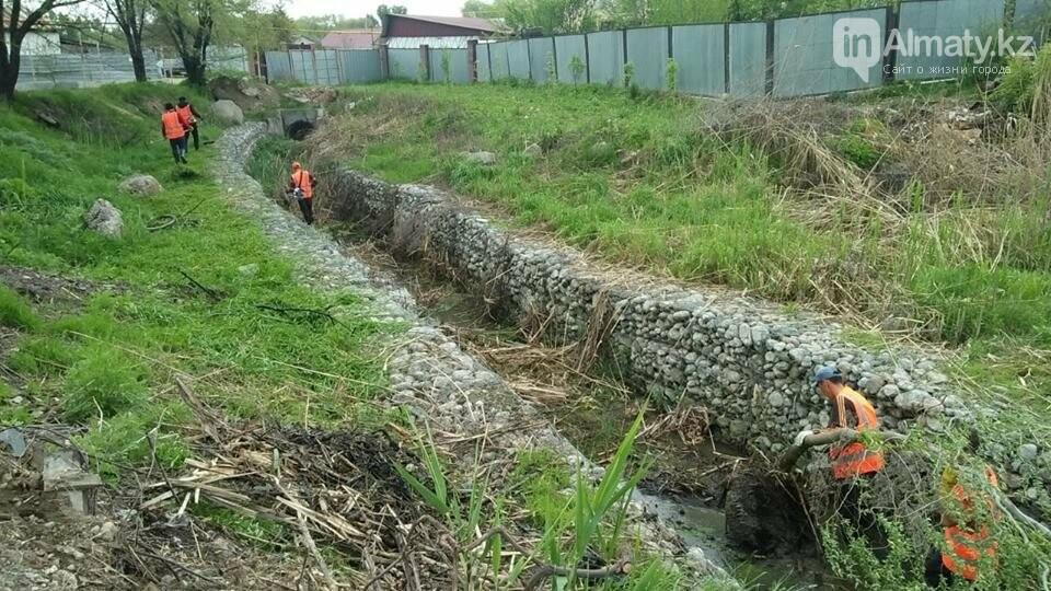 В болото превратились габионные каналы речки Карасу (ФОТО), фото-4