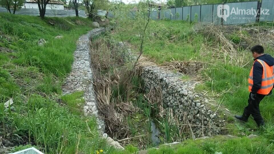 В болото превратились габионные каналы речки Карасу (ФОТО), фото-6