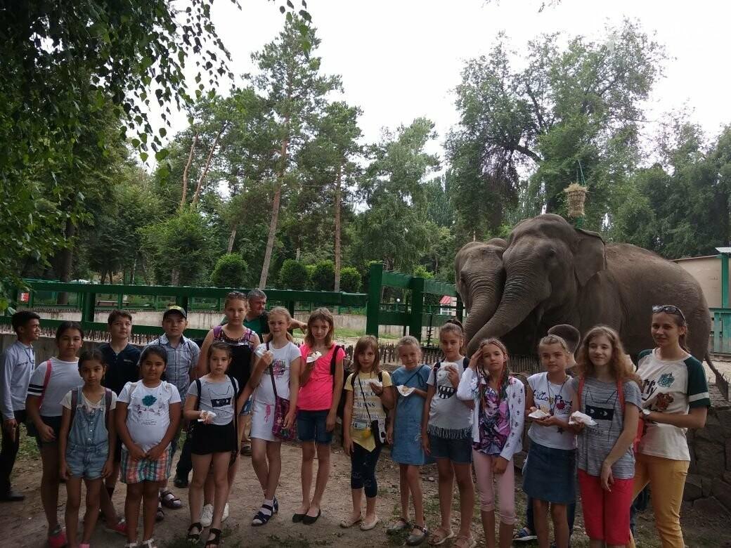 Алматинский зоопарк станет бесплатным на один день, фото-2