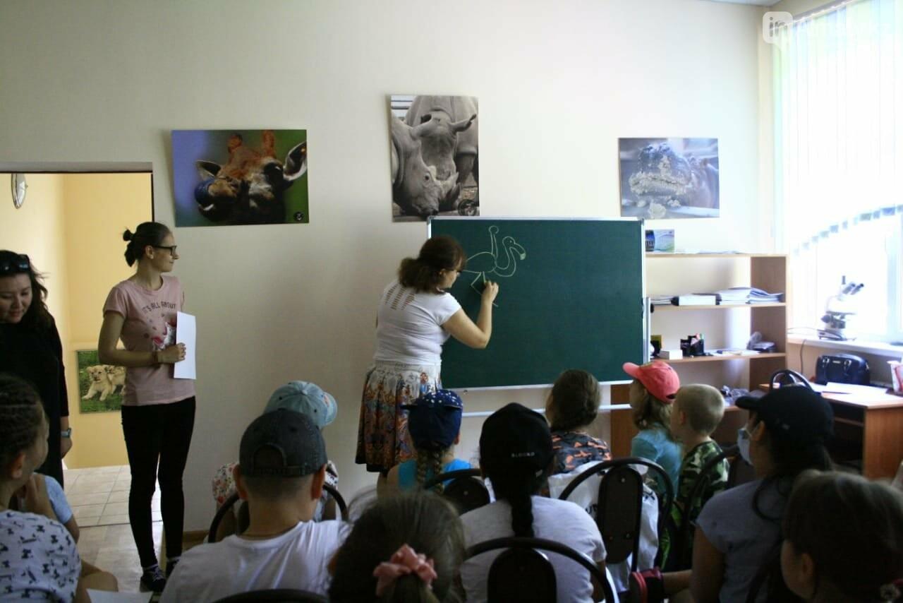 Алматинский зоопарк станет бесплатным на один день, фото-4