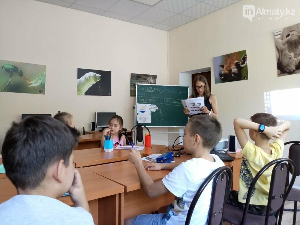 Алматинский зоопарк станет бесплатным на один день, фото-12