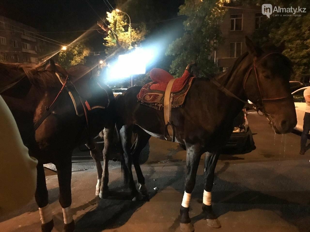 """Истощённых лошадей заметили за """"работой"""" у ночного клуба в Алматы , фото-3"""