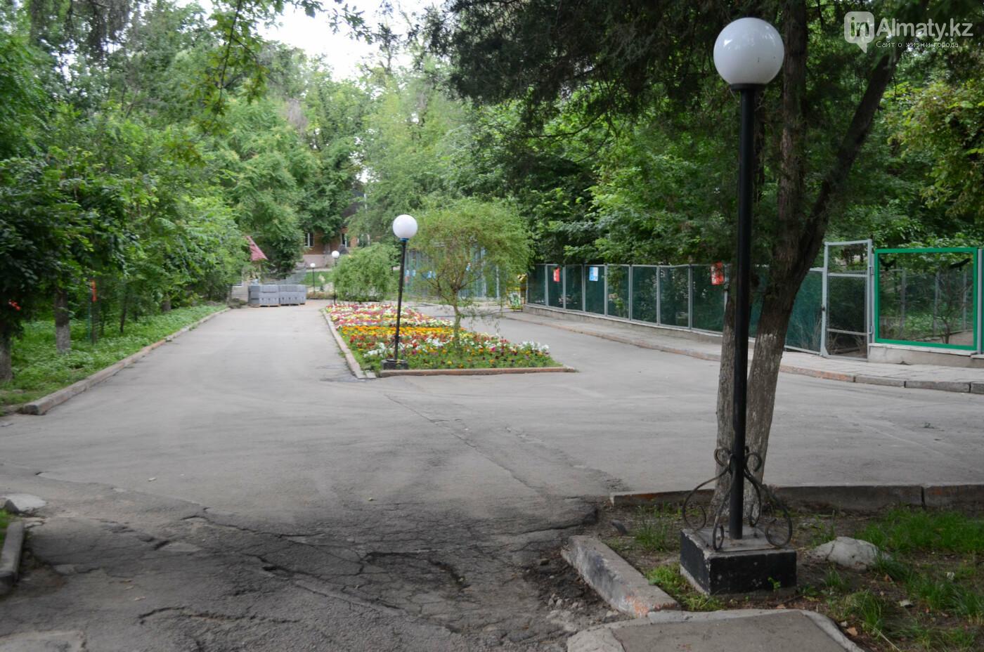 Барсы могут появиться здесь осенью: интервью нового директора Алматинского зоопарка, фото-4