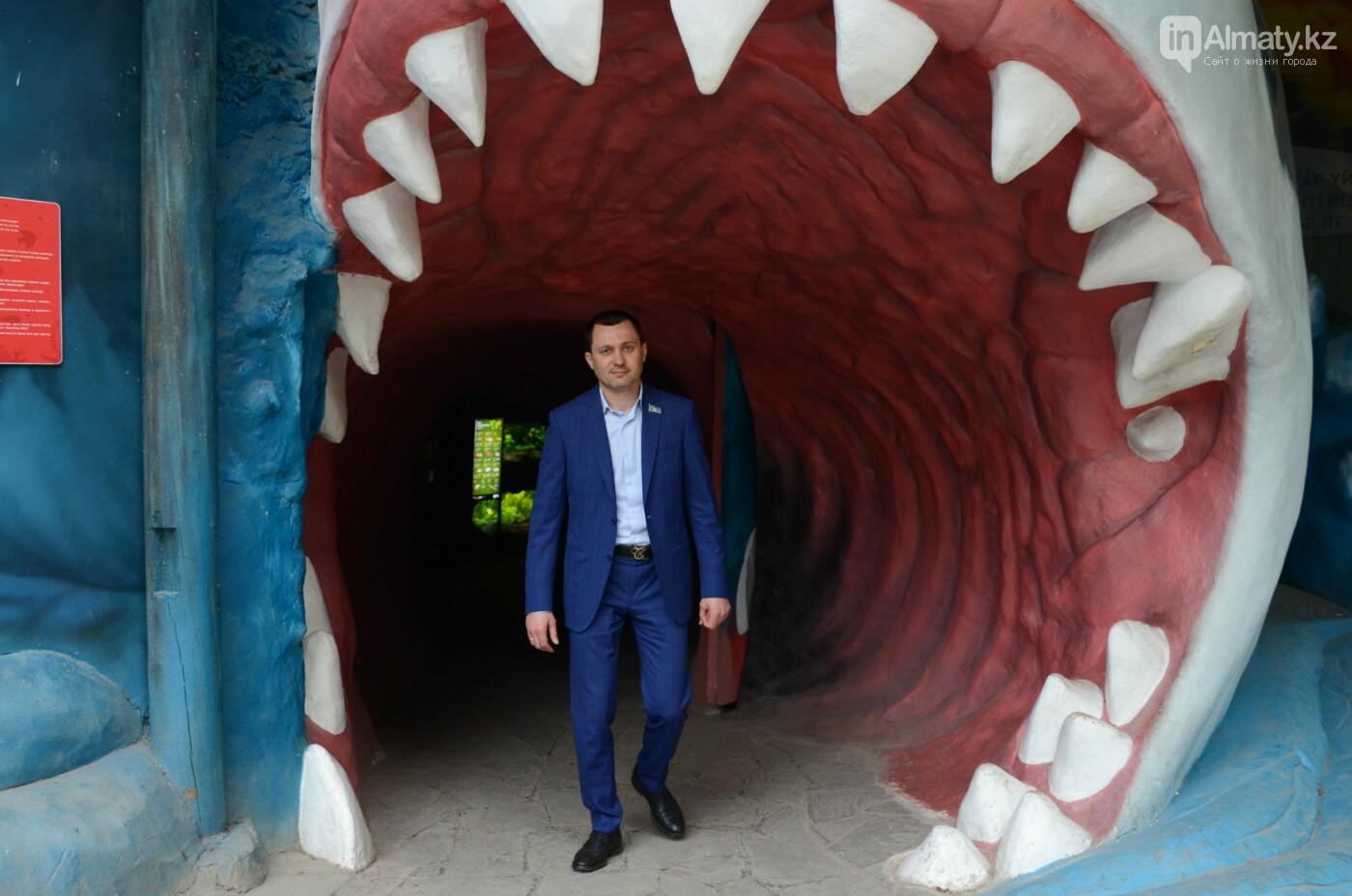 Барсы могут появиться здесь осенью: интервью нового директора Алматинского зоопарка, фото-5