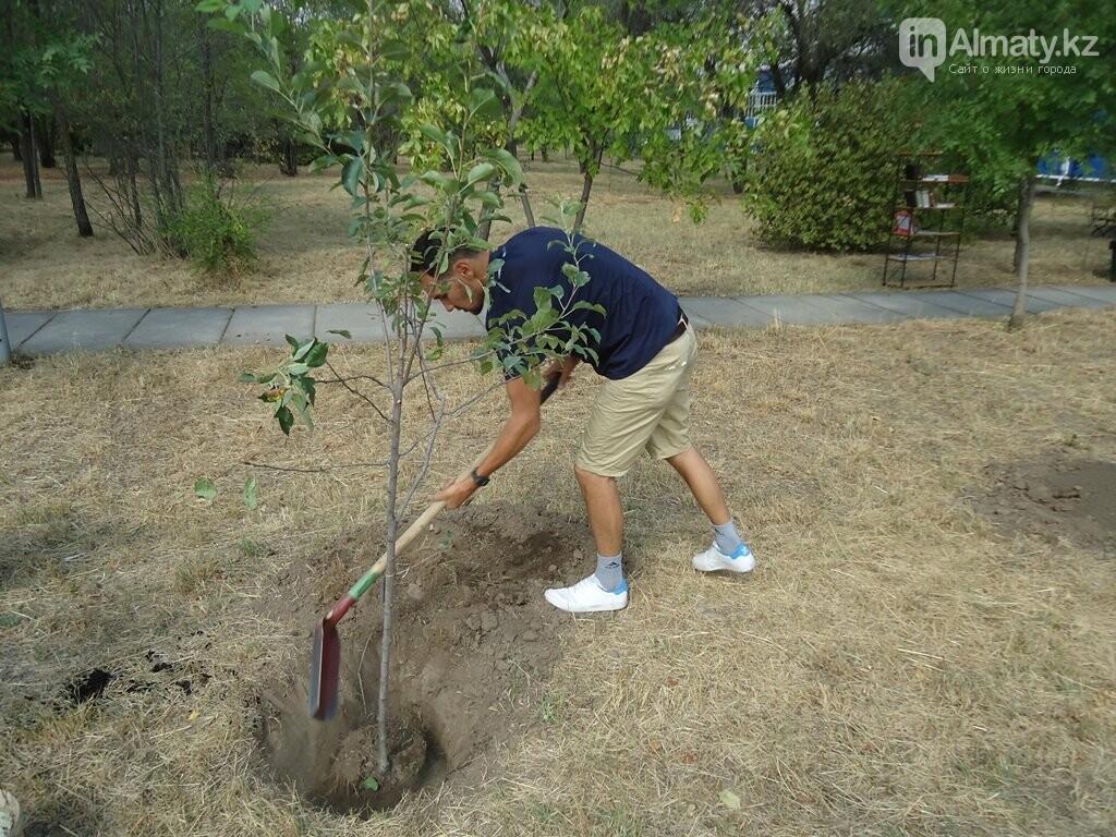 На Аллее журналистов в Алматы высадили яблони (фото), фото-7