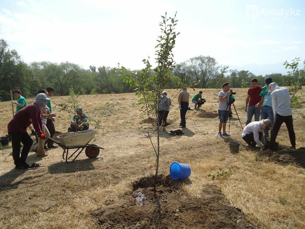 На Аллее журналистов в Алматы высадили яблони (фото), фото-9