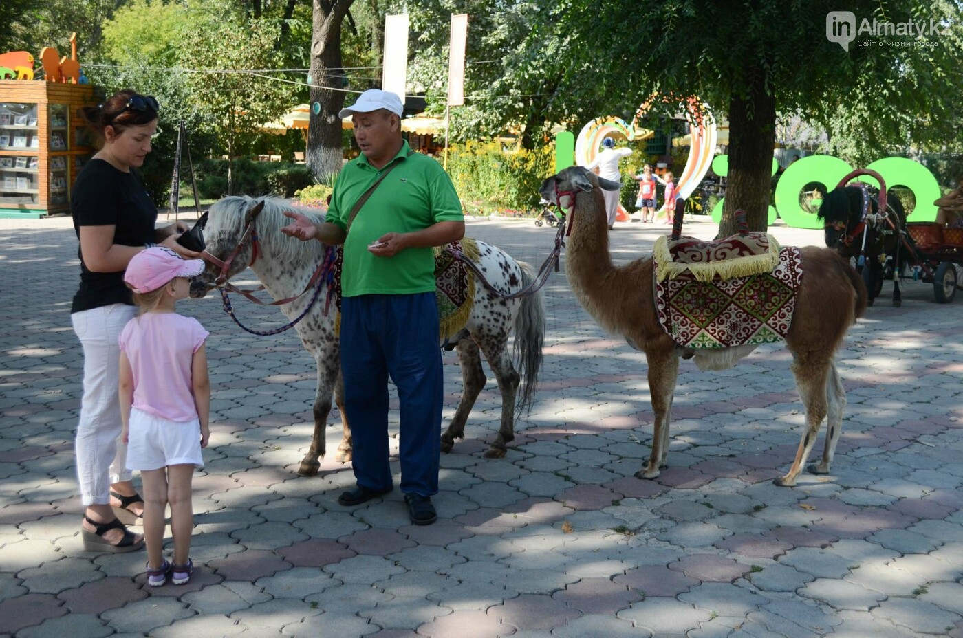 Как живут обитатели контактной секции Алматинского зоопарка (фото), фото-10