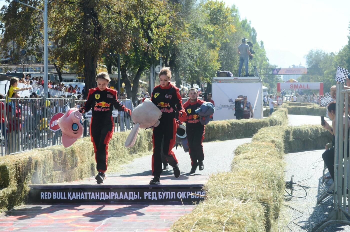 Как в Алматы прошла гонка самодельных болидов Red Bull Soapbox Race (фото), фото-15