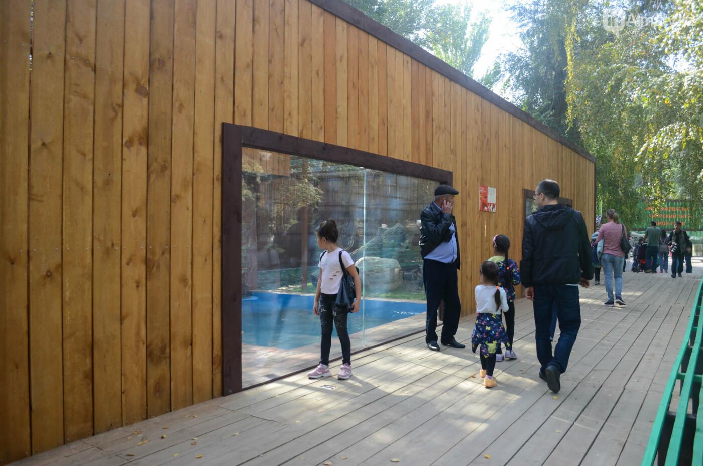 Медведь Акжолтай обрел новый дом в алматинском зоопарке (фото), фото-5