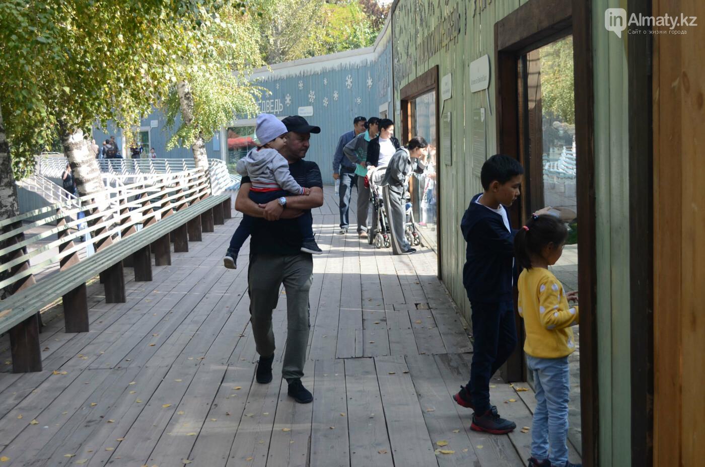 Медведь Акжолтай обрел новый дом в алматинском зоопарке (фото), фото-6