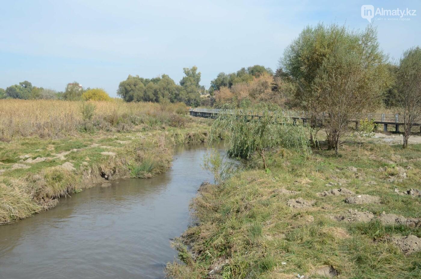 Как выглядит новый парк в зоне Аэропортовского озера и микрорайона Жас Канат в Алматы, фото-8