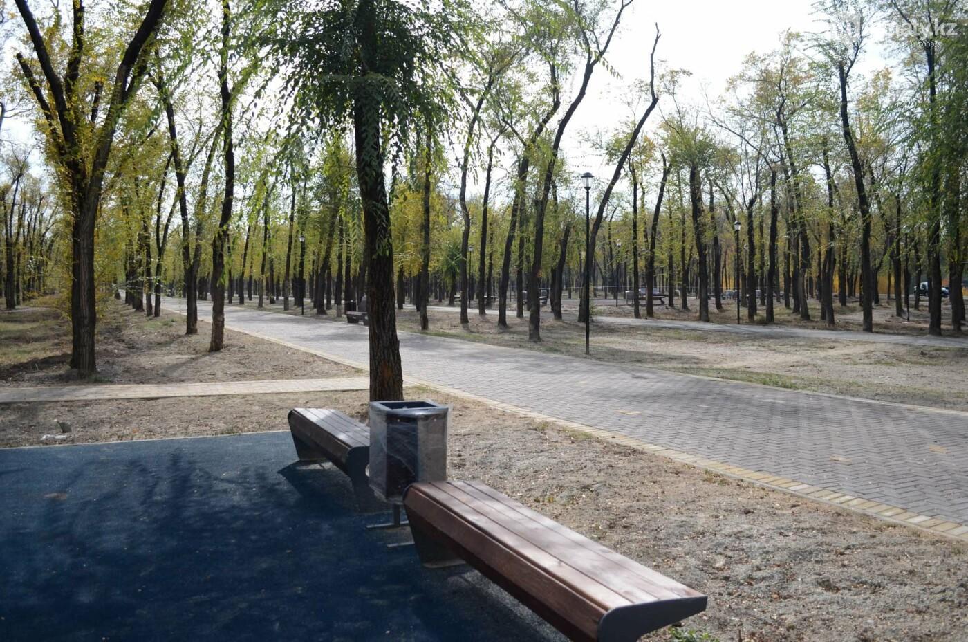 Как выглядит новый парк в зоне Аэропортовского озера и микрорайона Жас Канат в Алматы, фото-3