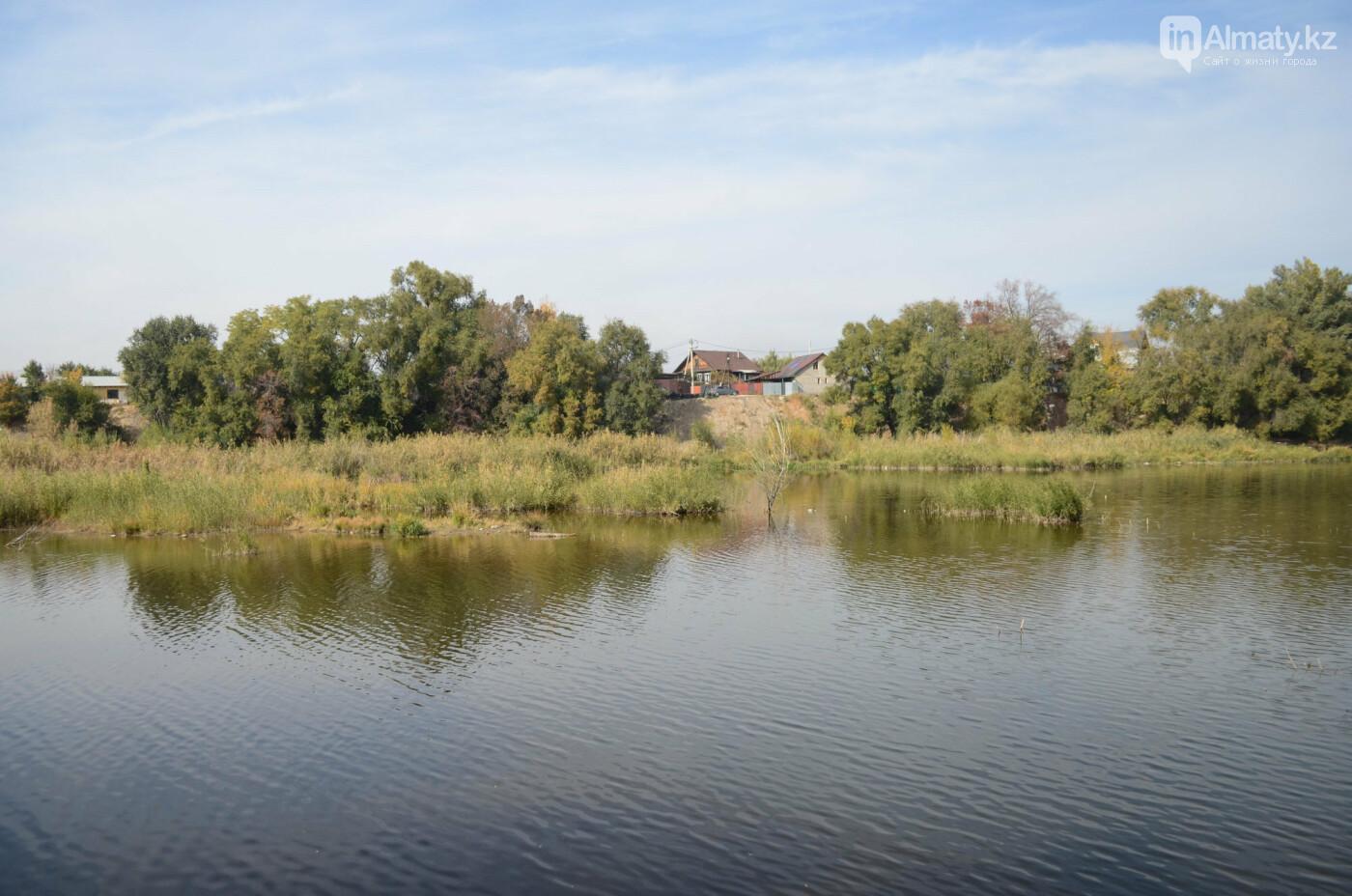 Как выглядит новый парк в зоне Аэропортовского озера и микрорайона Жас Канат в Алматы, фото-11