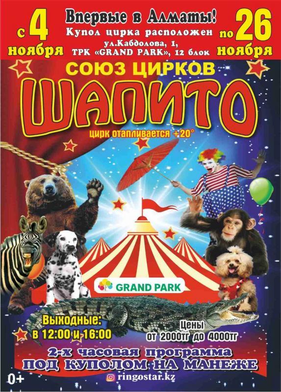 Как купить билеты в цирк алматы тульский драматический театр афиша октябрь