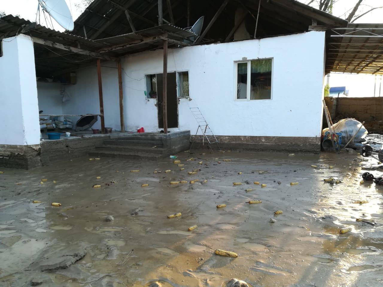 В селе Пиджим Алматинской области подтопило 270 домов, фото-5