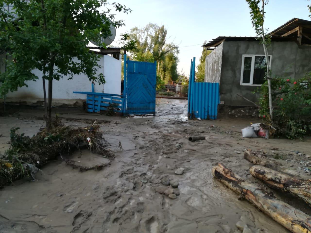 В селе Пиджим Алматинской области подтопило 270 домов, фото-4