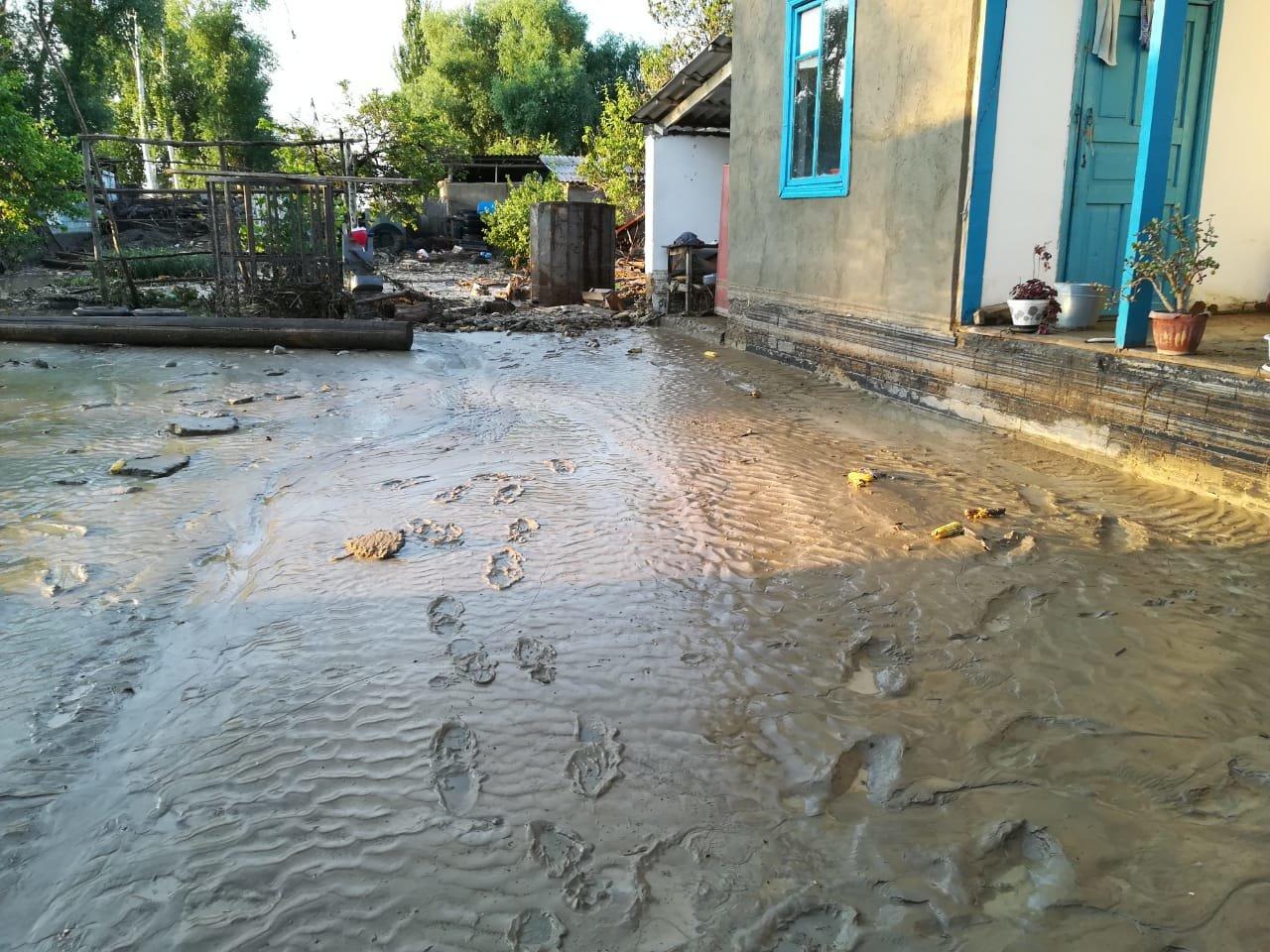 В селе Пиджим Алматинской области подтопило 270 домов, фото-3