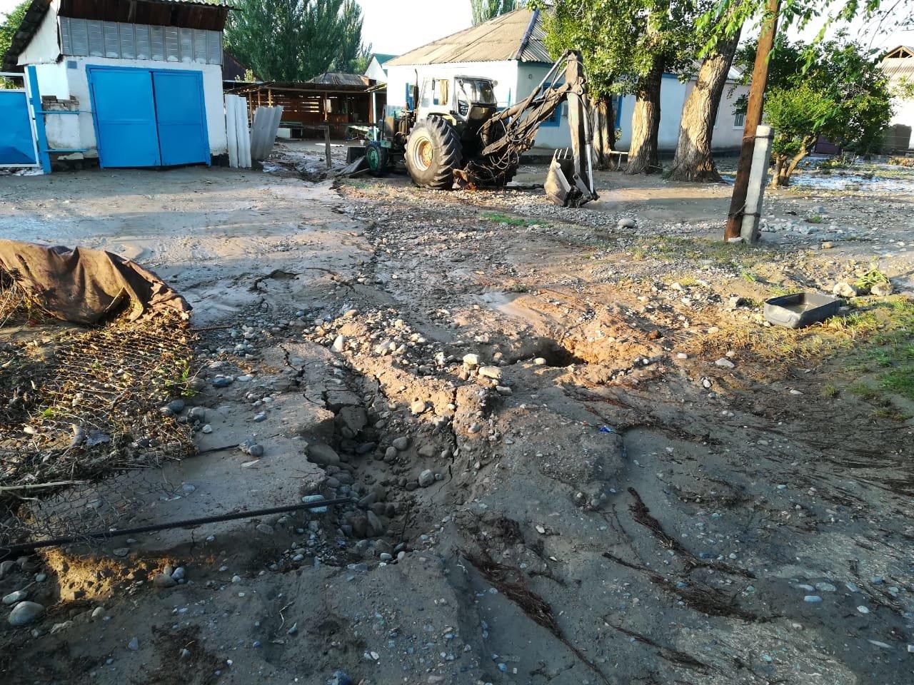 В селе Пиджим Алматинской области подтопило 270 домов, фото-1