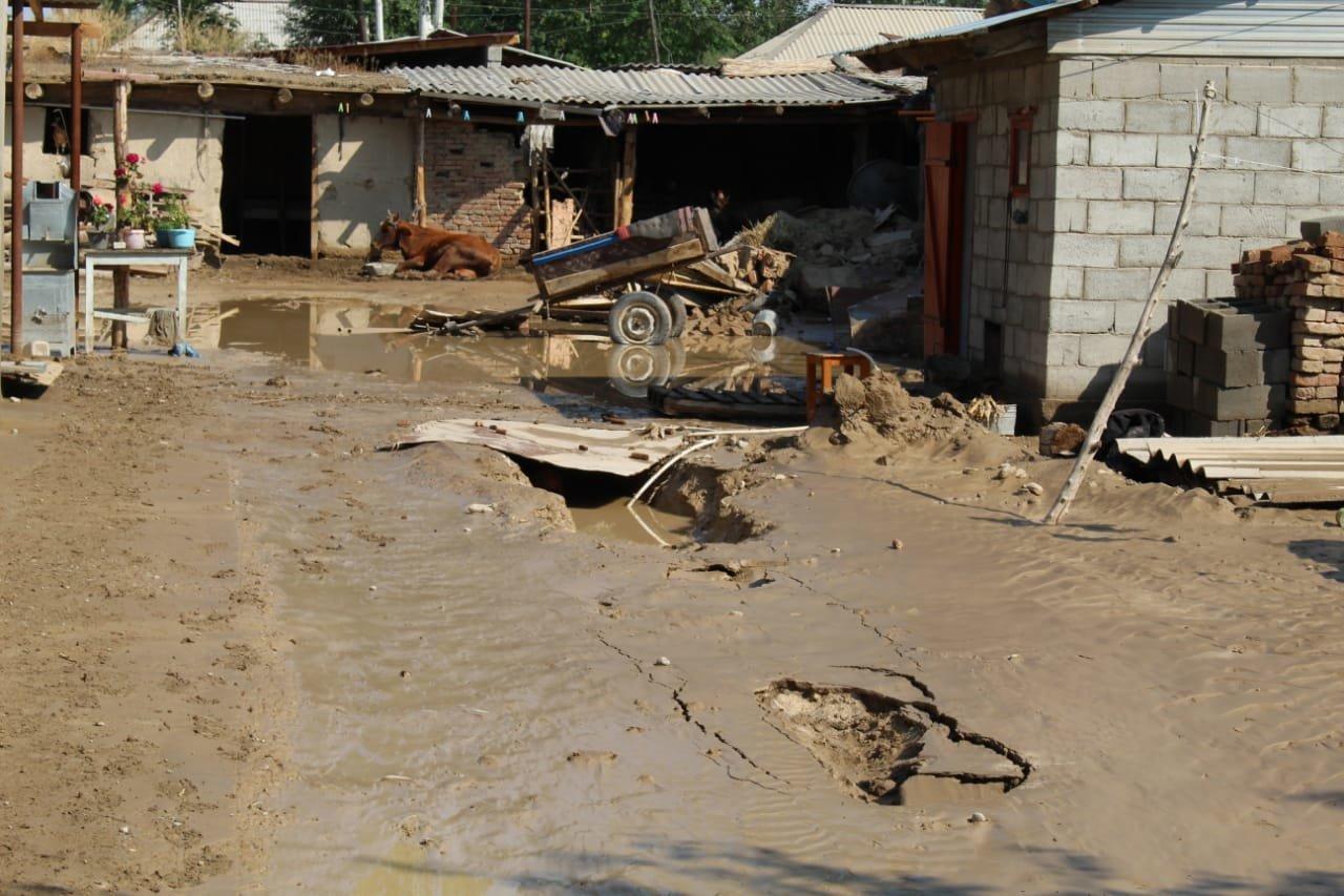 В Алматинской области оценивают ущерб от подтопления села Пиджим (видео), фото-4