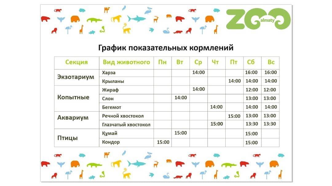 Алматинский зоопарк приглашает мастеров для создания фигуры из дерева, фото-1