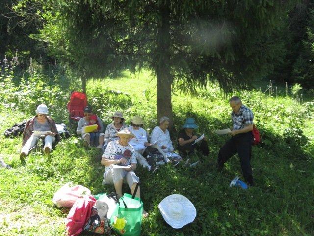 Для алматинских пенсионеров устроили поход в горное ущелье и провели арт-терапию, фото-2
