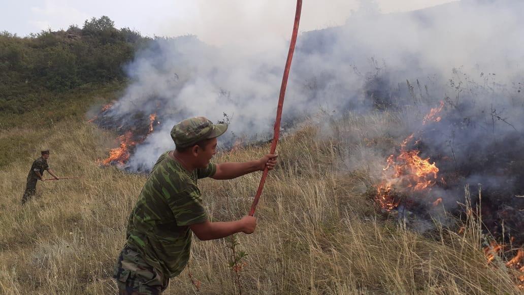 Крупный степной пожар тушат в Алматинской области, погибло три человека, фото-3
