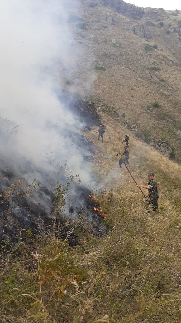 Крупный степной пожар тушат в Алматинской области, погибло три человека, фото-2