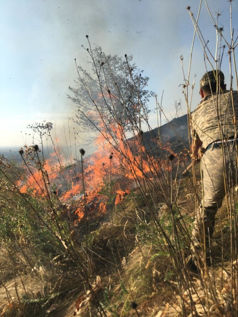 Вертолеты направили на тушение пожара близ Кок-Тобе (ФОТО), фото-3