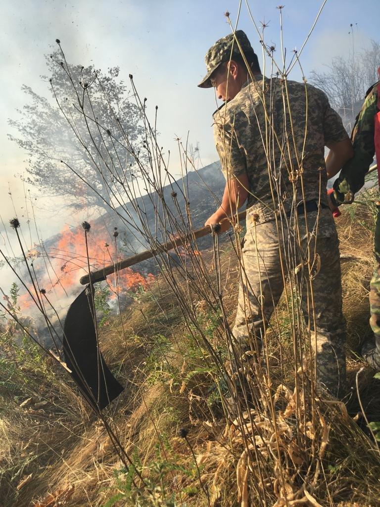 Вертолеты направили на тушение пожара близ Кок-Тобе (ФОТО), фото-4