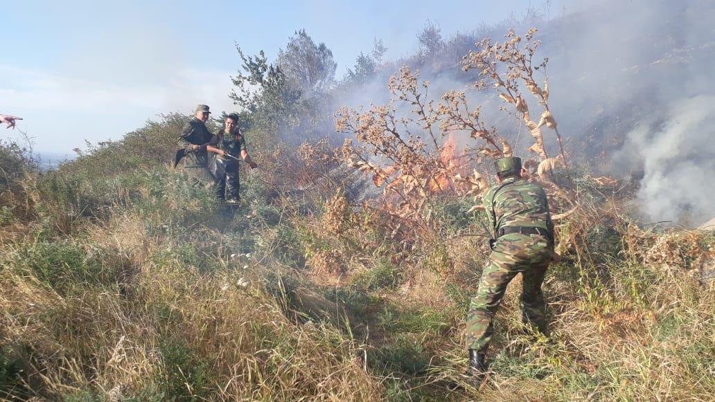 Вертолеты направили на тушение пожара близ Кок-Тобе (ФОТО), фото-6
