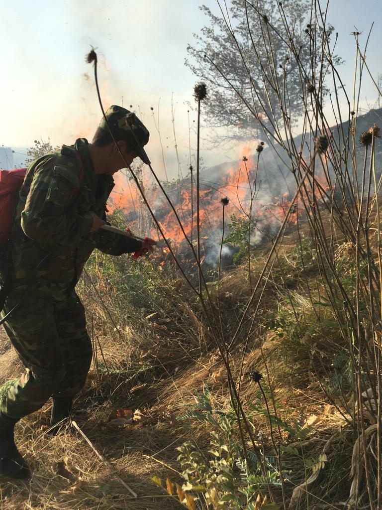Вертолеты направили на тушение пожара близ Кок-Тобе (ФОТО), фото-2
