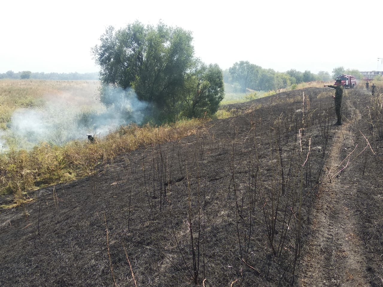 В Алматы снова тушили пожар сухостоя, фото-2, Фото пресс-служба ДЧС Алматы