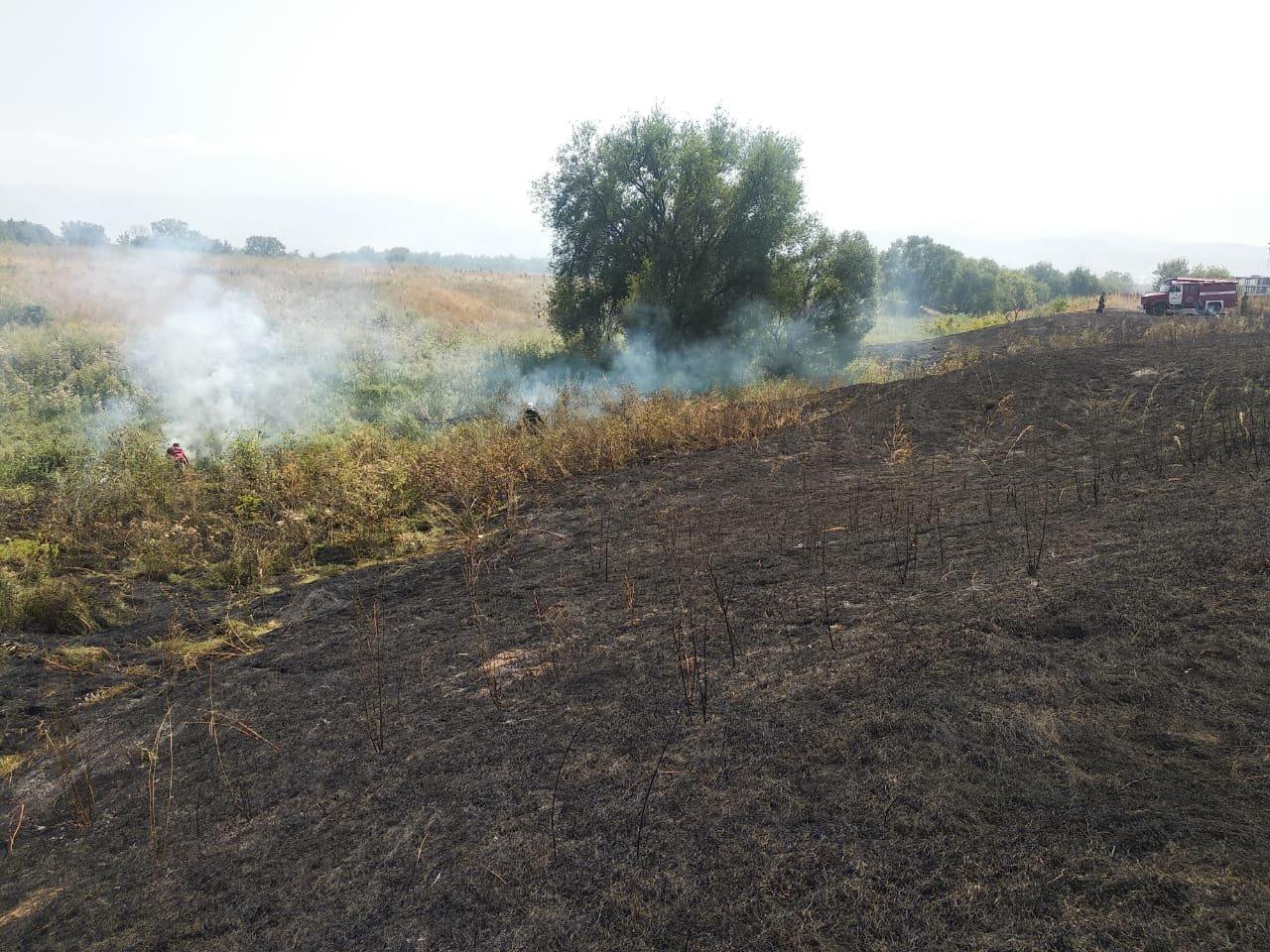 В Алматы снова тушили пожар сухостоя, фото-1, Фото пресс-служба ДЧС Алматы