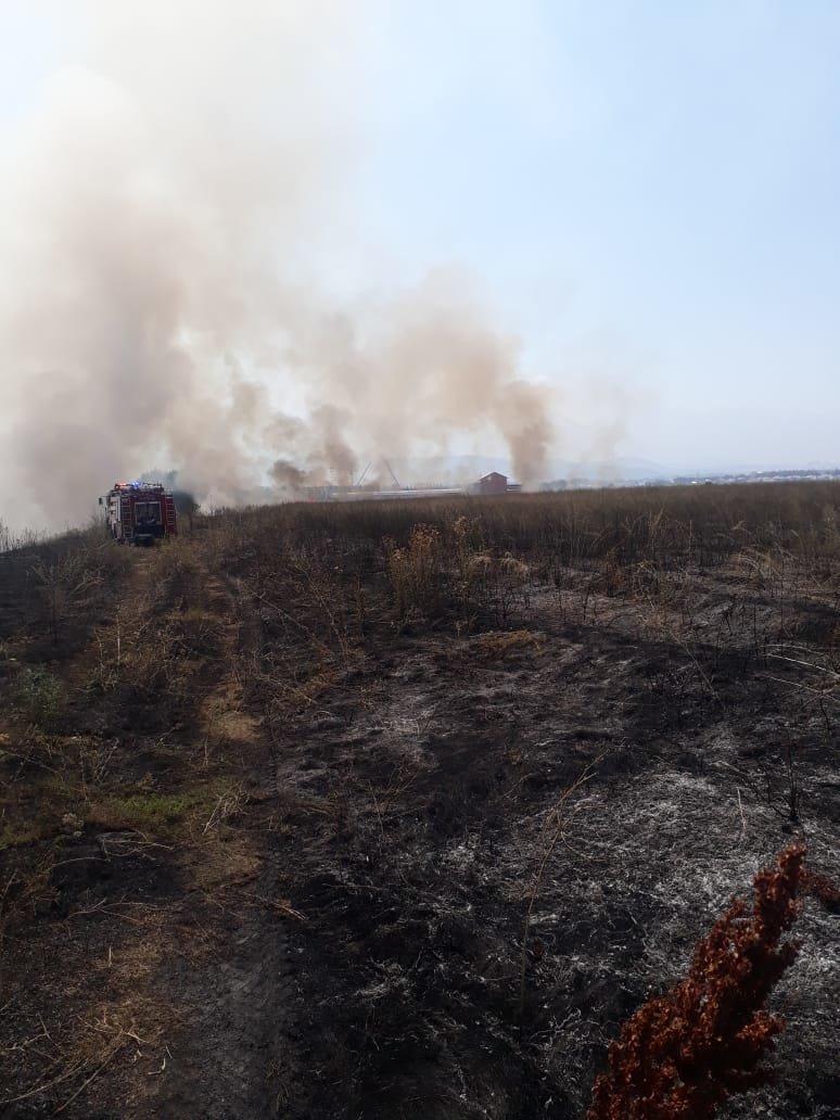 В Алматы снова тушили пожар сухостоя, фото-3, Фото пресс-служба ДЧС Алматы