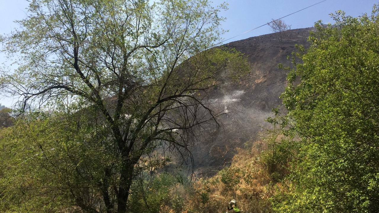 На Кок-Тобе снова тушат пожар, фото-3