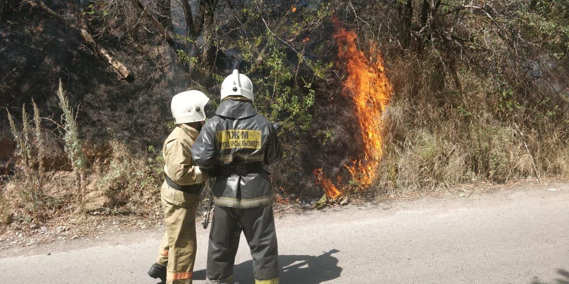 На Кок-Тобе снова тушат пожар, фото-4