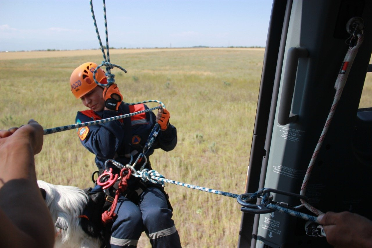 Алматинских собак-спасателей научили десантироваться (ФОТО), фото-3