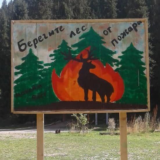 В Иле-Алатауском парке установили новые беседки и лавочки из экоматериалов, фото-4