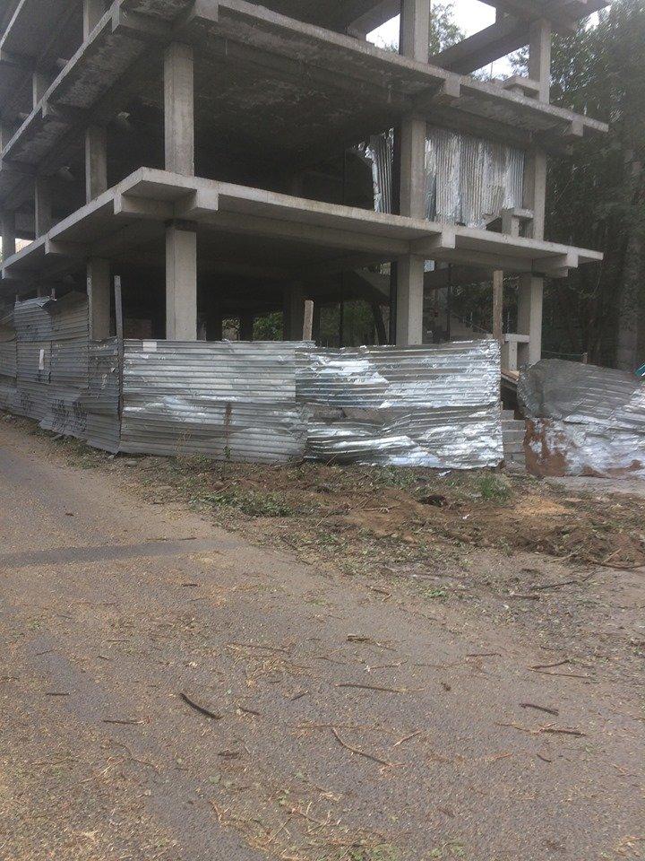 «Разрешение не требуется»: в Алматы по улице Сатпаева топировали деревья, фото-2