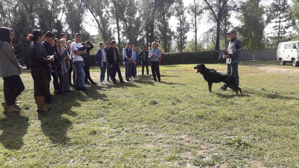 Студентам-юристам показали четвероногих стражей порядка Алматы (фото), фото-4