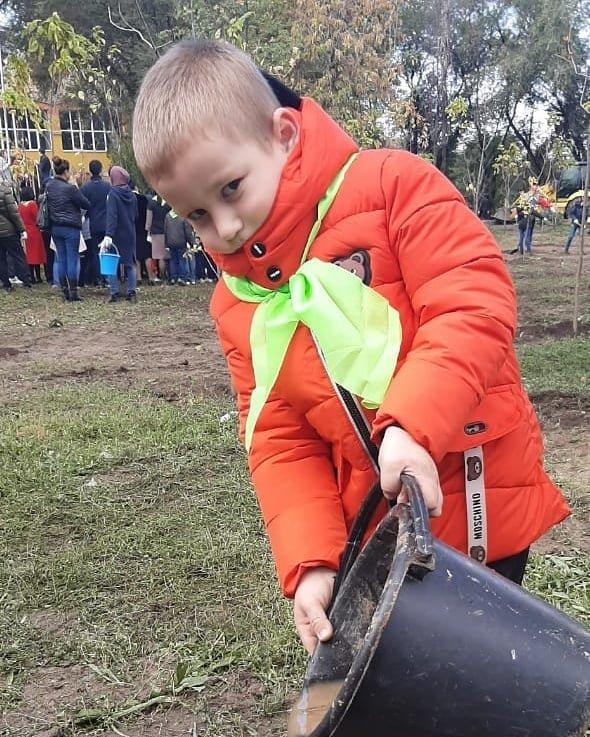 В Алматы озеленили 110 городских школ (фото), фото-7