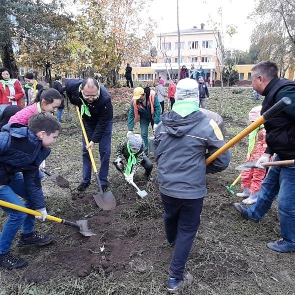 В Алматы озеленили 110 городских школ (фото), фото-4