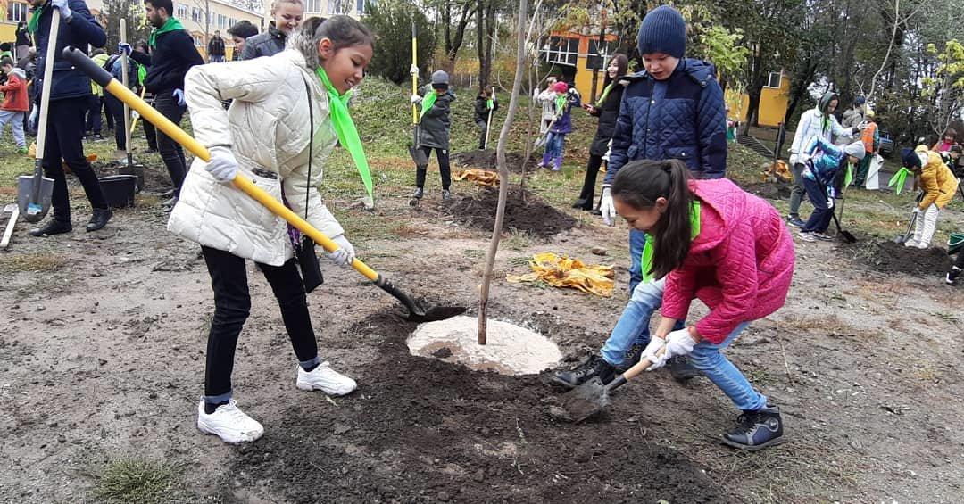 В Алматы озеленили 110 городских школ (фото), фото-3