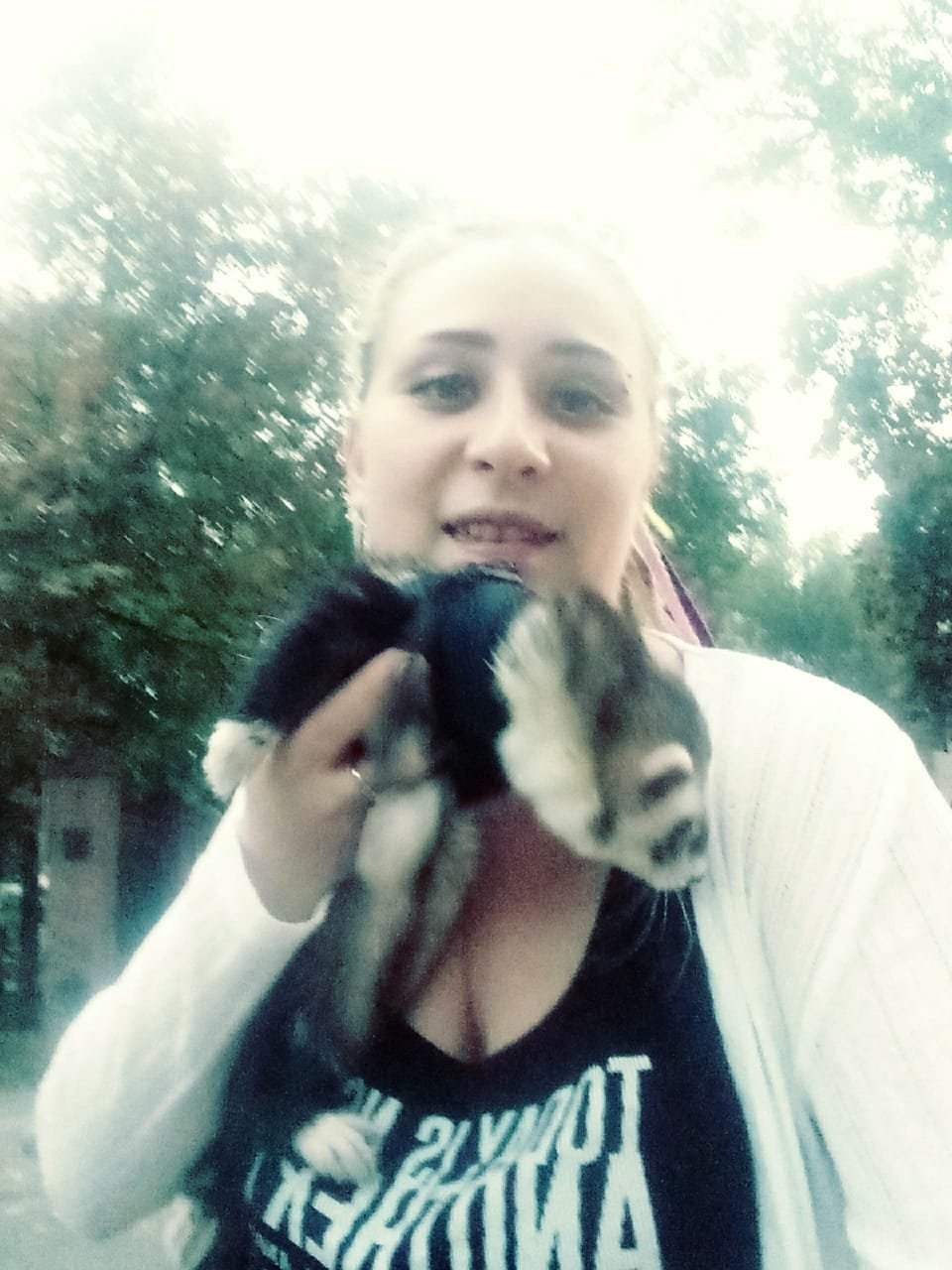 Хорька, которого засняли на видео в Алматы, вернули хозяева (фото, видео), фото-3