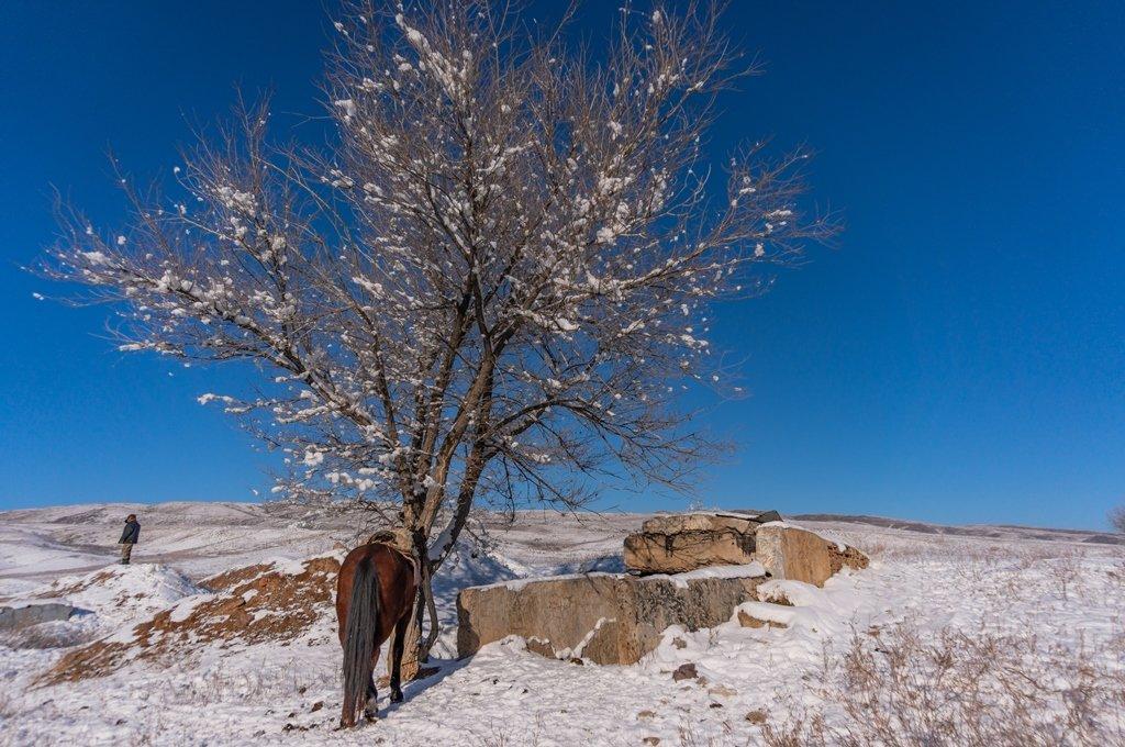 Как выглядит заброшенная ракетная шахта в Алматинской области (фото), фото-18